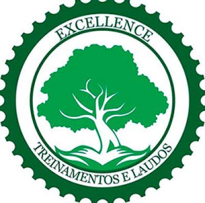 Excellence Consultoria em Segurança do Trabalho